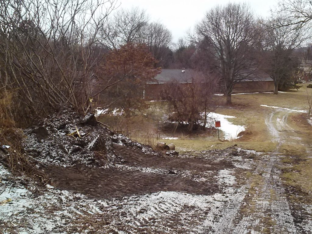 undergrowth near Herkimer Meth Bridge scrubbed